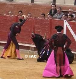 stierkämpfe in spanien